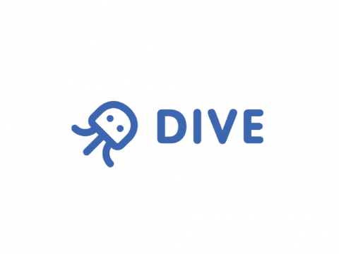 DIVE Networks